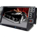 In Car DVD Players